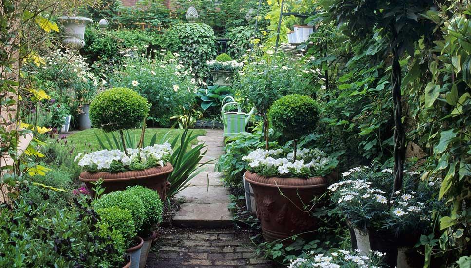 Anthony Noel Garden Design
